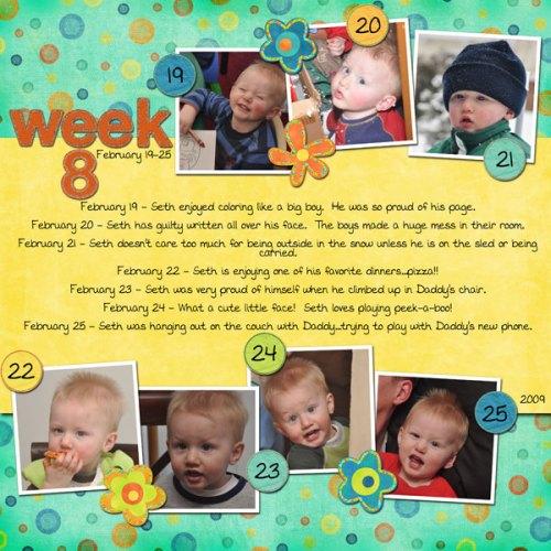 Seth's Week 8